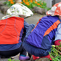 Culture of Jeju City, South Korea <br />