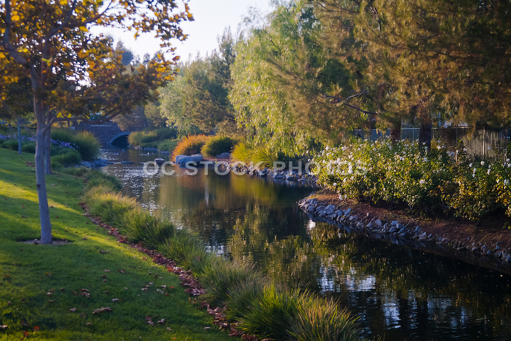 Bridgeport Lakeside Living at Valencia