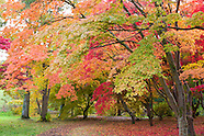 October in Bodnant Garden