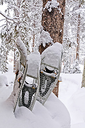 Snowshoes in fresh snow, Breckenridge, Colorado.