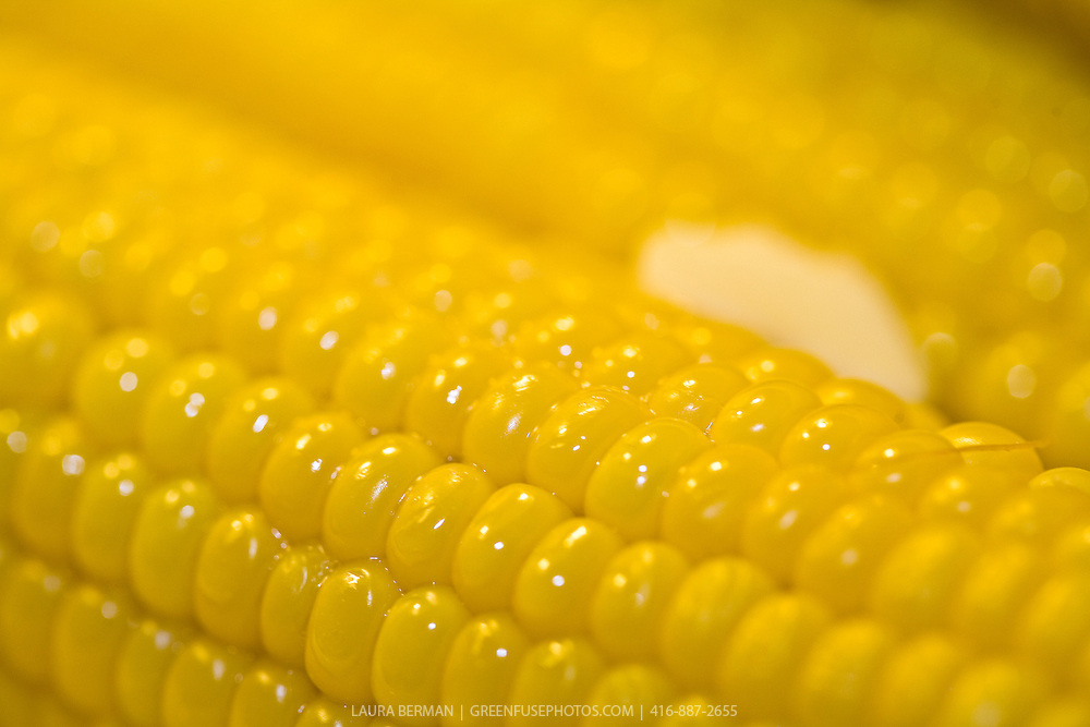 Sweet corn with butter melting over the freshly cooked plump corn kernels.