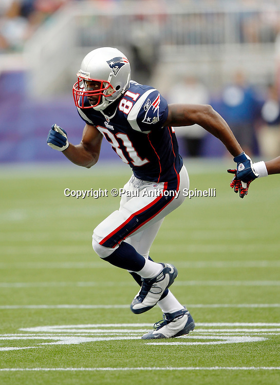 New England Patriots wide receiver Randy Moss (81) goes out for a pass during the NFL regular season week 3 football game against the Buffalo Bills on September 26, 2010 in Foxborough, Massachusetts. The Patriots won the game 38-30. (©Paul Anthony Spinelli)