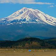 Majestic Mount Shasta in Northern California