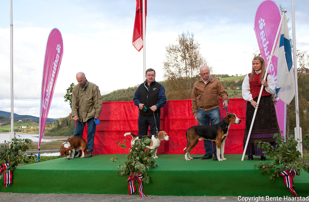 Finland participated with three dogs. From left: Erkki Nurmiranta with the drever, Skogskallets Oscar, Kalevi Rytky with finsk støver, Mannevaaran Mora, and Markku Passisalo with beagle, Kuopusmaan Romu.
