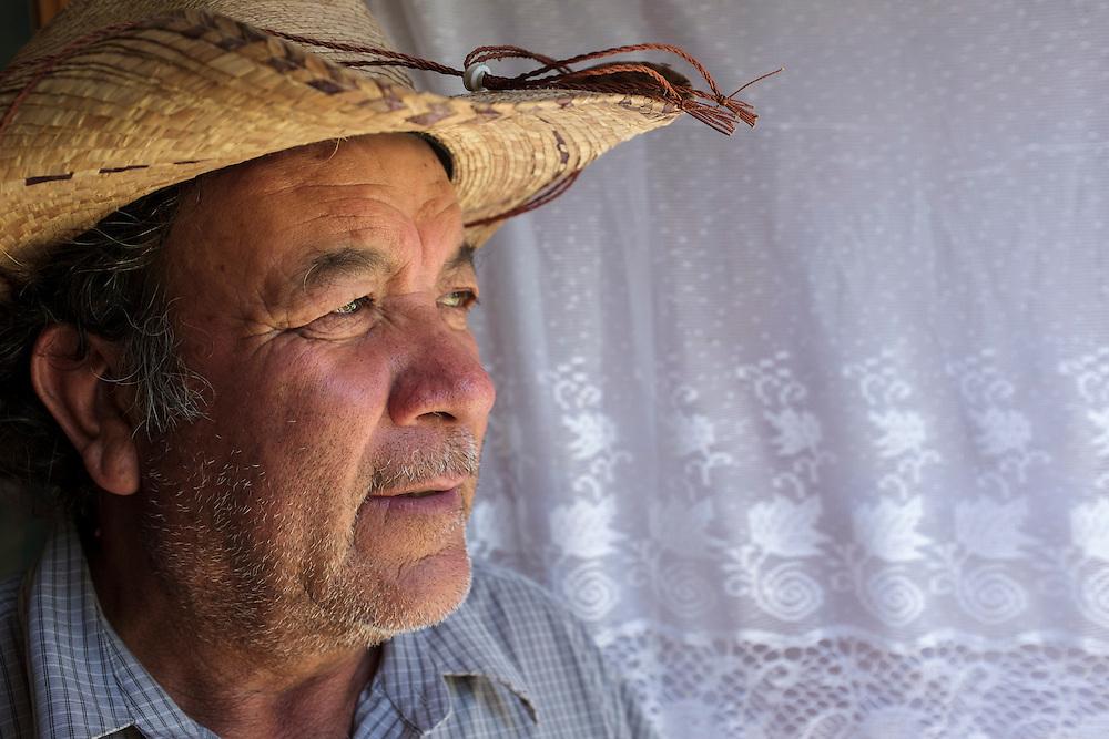 Fransico. Agave Farm, Mexico.