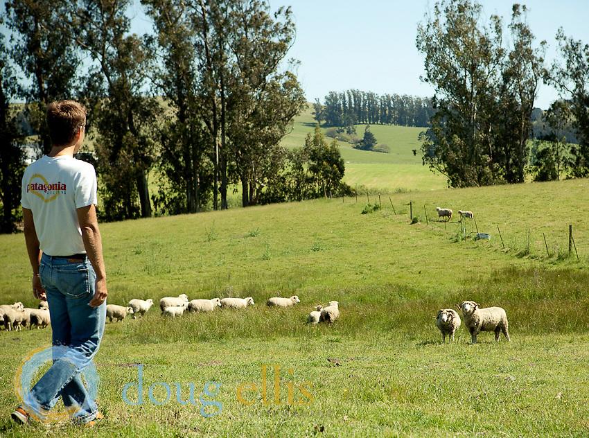Skyhorse Ranch Photos 2010
