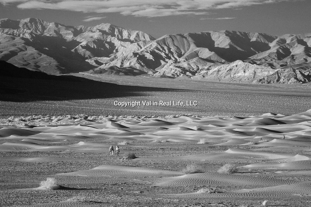 Hikers in Mesquite Sand Dunes in infrared