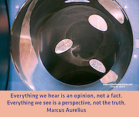 Quote:  Everything we hear is an opinion, not a fact. Everything we see is a perspective, not the truth.  By Marcus Aurelius.  Meme.