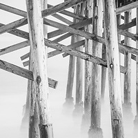 Beach pier poles black and white panorama photo. Pier support poles underneath a California pier along the Pacific Ocean. Panoramic pphoto ratio is 1:3. Copyright ⓒ 2017 Paul Velgos with All Rights Reserved.