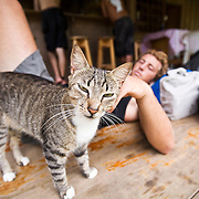 Torrey relaxes after a surf session and pets a local cat in Drake Bay, a town in the Osa Peninsula of southern Costa Rica