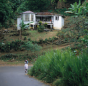 Traditional Homes in Jamaica