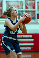 13 January 2020:  Ridgeview Mustangs v Heyworth Hornets girls basketball at Heyworth High School in Heyworth IL<br /> <br /> Photo by Alan Look