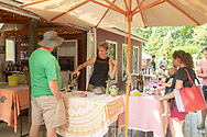 """The Old Field Vineyards, Southold, NY """"Small family owned and sustainable vineyard and winery located on the north fork of Long Island, NY."""""""