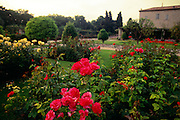 France, Provence, Nice, Gardens at the Cimiez Monastery