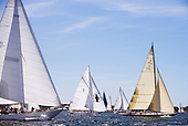 Marilee Museum of Yachting Regatta photos