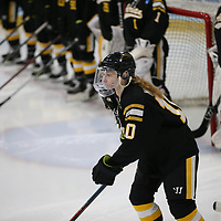 NCAA 2019 Third Place - Women's Ice Hockey: University of St. Thomas (Minnesota) Tommies vs. Adrian College Bulldogs