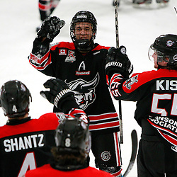 AURORA, ON - Jan 24 : Ontario Junior Hockey League Game Action between the Georgetown Raiders and the Aurora Tigers, Georgetown Raiders Hockey Club celebrate the win.<br /> (Photo by Brian Watts / OJHL Images)