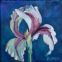 "6""h x6""w, 6"" x 6"", Original art, oil painting, flower, lori cusick, iris"