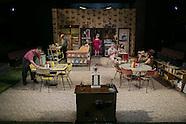 Triad Stage Tennessee Playboy