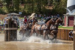 Weber Chester, USA, Asjemenou, Boris W, First Edition, Reno<br /> Tryon - FEI World Equestrian Games™ 2018<br /> Fahren Teilprüfung Marathon Team- und Einzelwertung<br /> 22. September 2018<br /> © www.sportfotos-lafrentz.de/Dirk Caremans