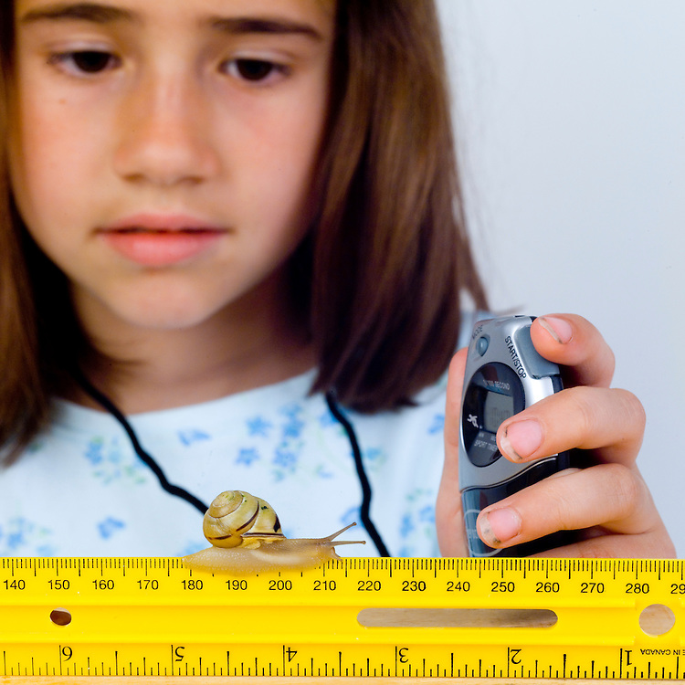 Girl using two measurement tools, a ruler and a timer, to measure the distance the snail travels and the time it takes for the snail to travel.