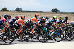 Riejanne Markus (NED) in the bunch at Deakin University Elite Women Cadel Evans Road Race 2019, a 113 km road race starting and finishing in Geelong, Australia on January 26, 2019. Photo by Sean Robinson/velofocus.com