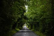 Road near Shannon bridge.