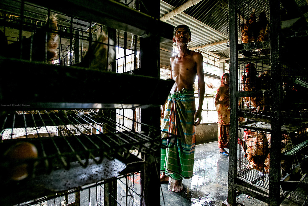Poultry farmer Mohammad Korban Ali is depressed. During a heatwave earlier in the summer one third of his chickens died from heat stroke. In August a flood drowned half of the hens that had survived the heat. - It has been a bad summer, he says.<br /> The low lying areas of Bangladesh are regularly flooded by the melting glaciers of Himalaya. They also suffer regularly from drought caused by warmer weather. With rising sea levels the farmland gets destroyed by salt water intrusion.