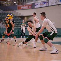 4th year outside hitter Dalton Wolfe (9) of the Regina Cougars in action during Men's Volleyball home game on February 3 at Centre for Kinesiology, Health and Sport. Credit: Arthur Ward/Arthur Images