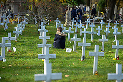 November 1, 2018 - Krakow, Poland - A child seen squatting next to unknown military soldiers graves at the Military Cemetery during the celebration..All Saints Day, also known as The Day of the Dead, is a Roman Catholic day of remembrance for friends and loved ones who have passed away. (Credit Image: © Omar Marques/SOPA Images via ZUMA Wire)
