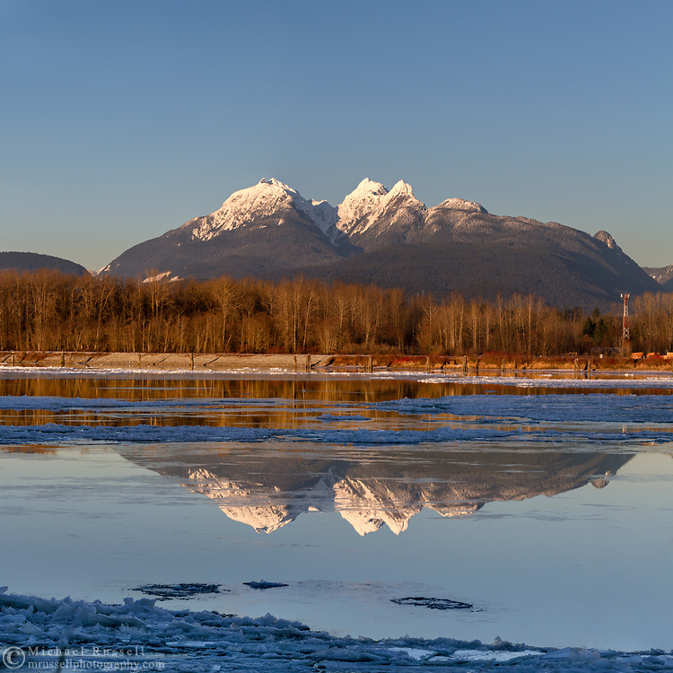 The Golden Ears mountains reflected in the Fraser River during a relatively rare cold snap in the Fraser Valley. This view is photographed from Brae Island Regional Park's Tavistock Point in Langley, British Columbia with the unusual circumstance of a partly frozen Fraser River in the foreground.  The Golden Ears (Mount Blandshard) are McPhaden Peak, Edge Peak and Blandshard Peak.
