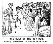 "The Cult of the Toy Dog. Chorus of admiring ladies. ""Oh, do let me see the darling!"""