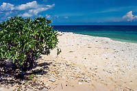 Riau Islands, Natuna Islands. Southwest Natuna. Small island just north of Kalimantan. On the beach.