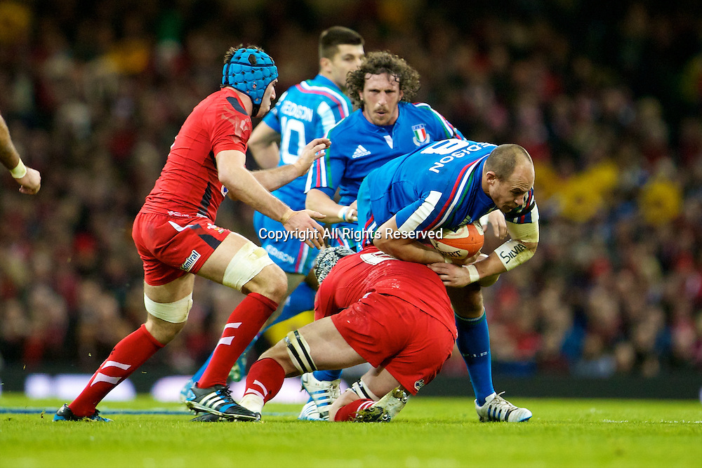 01.02.2014 Cardiff, Wales. Italy number 8 Sergio Parisse (Stade Français) during the Six Nations game between Wales and Italy from the Millennium Stadium.