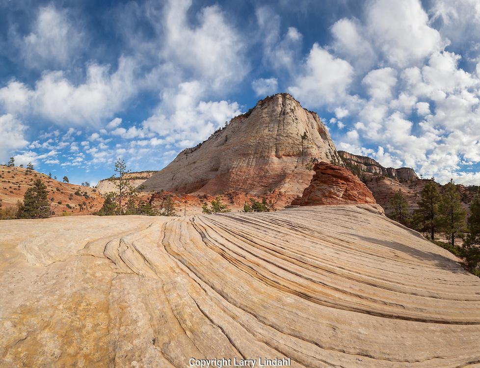 Zion National Park, Checkerboard Mesa, Utah