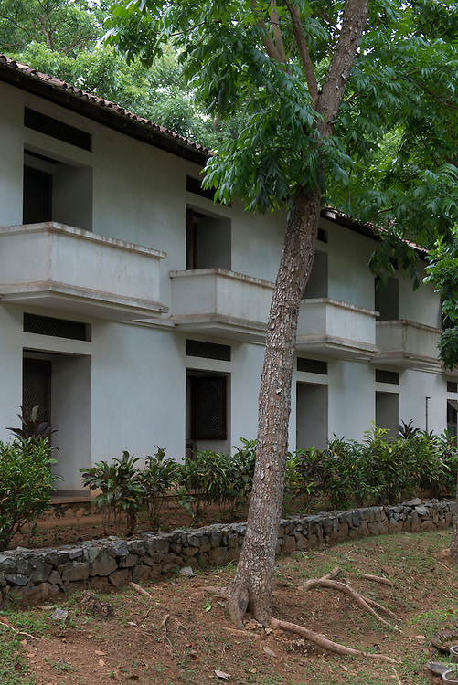 The Institute for Integral Education<br />