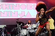 Photos of the band Shinobi Ninja performing at Catalpa Music Festival on Randall's Island, NYC. July 28, 2012. Copyright © 2012 Matthew Eisman. All Rights Reserved.