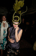 Isabella Blow. Remi and Olivier Krug host the Krug Rose celebration. Debenham Place, 8 Addison Rd. London W14. 28 June 2005. ONE TIME USE ONLY - DO NOT ARCHIVE  © Copyright Photograph by Dafydd Jones 66 Stockwell Park Rd. London SW9 0DA Tel 020 7733 0108 www.dafjones.com