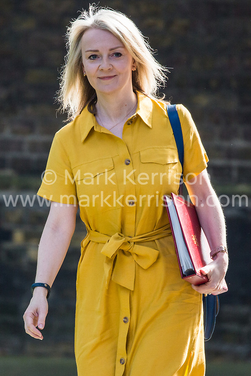 London, UK. 7 May, 2019. Liz Truss MP, Chief Secretary to the Treasury, arrives at 10 Downing Street for a Cabinet meeting.