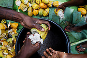 Workers are opening cocoa fruits, and from them picking beans, in the plantation of Claudio Corallo on the island of Principe, Sao Tome and Principe, (STP) a former Portuguese colony in the Gulf of Guinea, West Africa.
