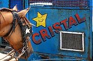 Horse and beer wagon in Santa Cruz del Norte, Mayabeque, Cuba.