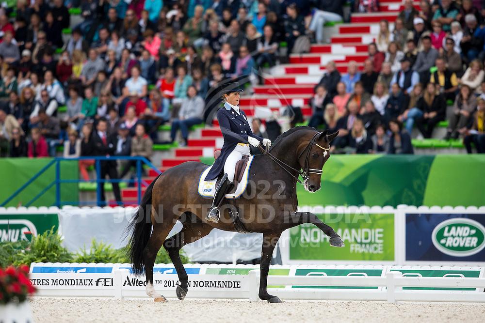 Tinne Vilhelmson Silfven, (SWE), Don Auriello - Grand Prix Special Dressage - Alltech FEI World Equestrian Games&trade; 2014 - Normandy, France.<br /> &copy; Hippo Foto Team - Leanjo de Koster<br /> 25/06/14