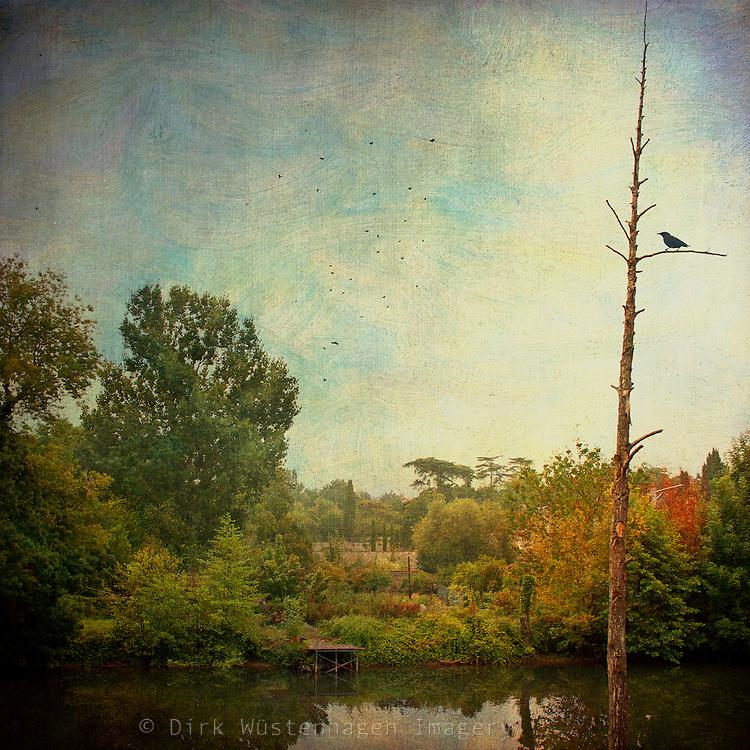 Gardens near Poitiers, France on a misty morning - texturized photograph