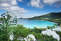 Cinnamon Bay and it's pristine unspoiled beach on the island of St. John in the United States Virgin Islands.