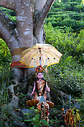 Tree Shrine to Amman/Devi at Hindu Kovil near Haputale.<br /> Statue with umbrella, near Haputale.