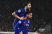 Chelsea midfielder Ruben Loftus-Cheek scores a goal 0-1 and celebrates during the Premier League match between Wolverhampton Wanderers and Chelsea at Molineux, Wolverhampton, England on 5 December 2018.