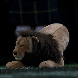 Lion, during game 4 of the British and Irish Lions 2017 Tour of New Zealand,The match between  Highlanders and British and Irish Lions, Forsyth Barr Stadium, Dunedin, Tuesday 13th June 2017<br /> (Photo by Kevin Booth Steve Haag Sports)<br /> <br /> Images for social media must have consent from Steve Haag