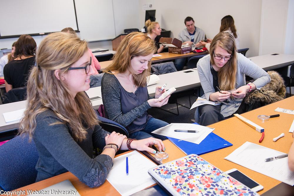 School of Education - Elementary Social Studies Methods