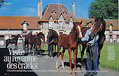 Normandie Riding Stables VSD FR