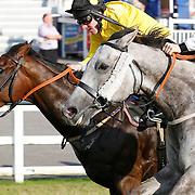 Royal Bajan and Freddie Tylicki winning the 5.15 race